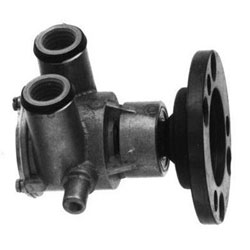 Sierra Raw Water Pump