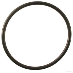 Spectra Desalinator Replacement Charcoal Filter Housing O-Ring