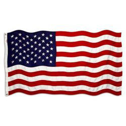 Annin United States Flag / Ensign 12 x 18
