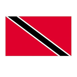 Annin Trinidad & Tobago Courtesy Flag