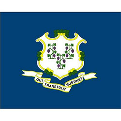 Annin Connecticut State Flag