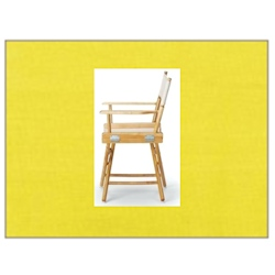Telescope Casual Replacement Canvas Chair Covers