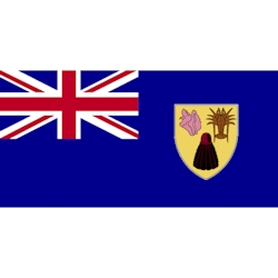 Annin Turks and Caicos Courtesy Flag