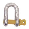 TITAN Screw Pin D Shackle