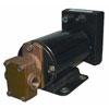 Groco GPBR-1 Positive Displacement Gear Pump - Diesel Transfer