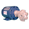 Oberdorfer Oil Change Gear Pump