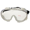 Western Pacific Trading Anti-Fog Safety Goggles