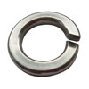 SeaChoice Stainless Steel Lock Washers